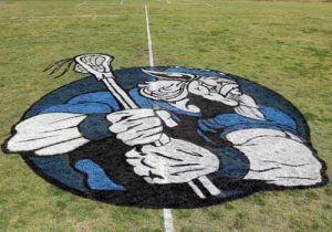 Vikings logo on grass by Grass Graphix